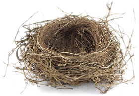 Nest N A Place Of Retreat Rest Or Lodging