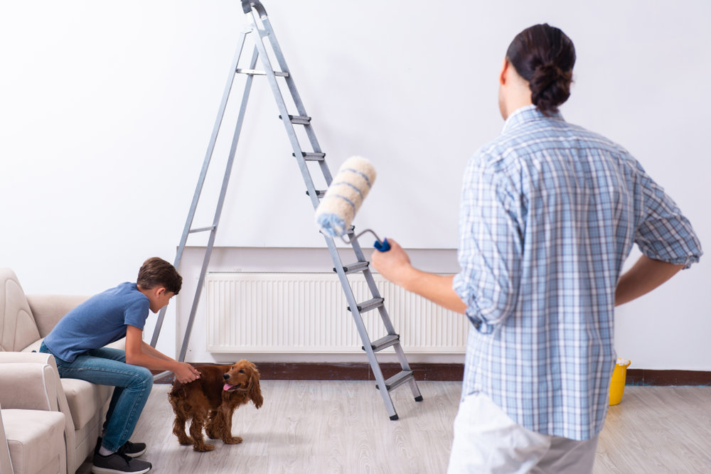 pet safety home remodels sale